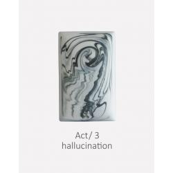 ACT 3- Hallucination