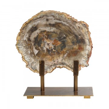 Escultura Petrified Wood