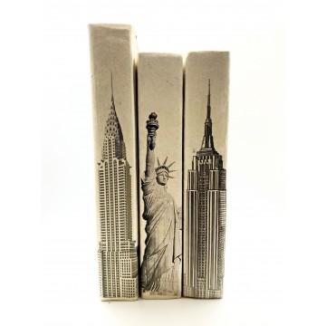 SET DE 3 LIBROS NEW YORK...